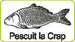 Pescuit la Crap