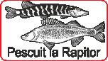 Pescuit la Rapitor