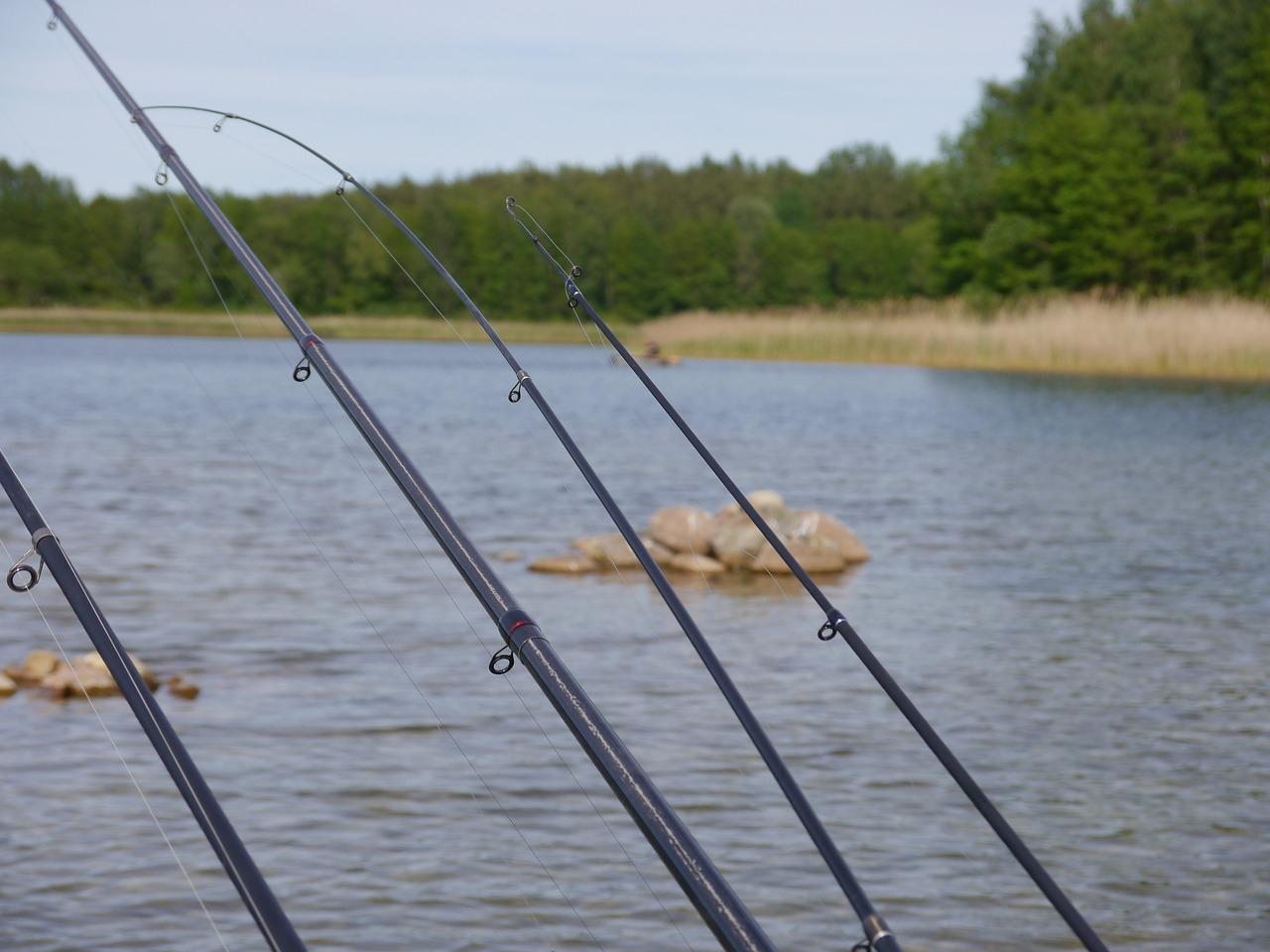 Alegerea lansetei de pescuit