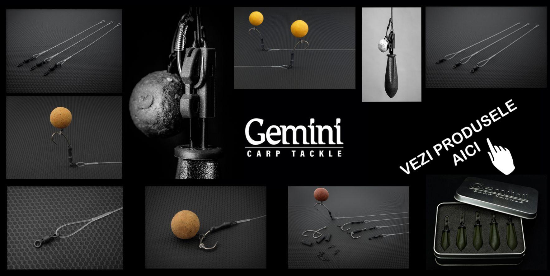 Gemini Carp System - Reinventare a monturii Helicopter